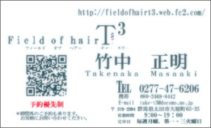 Field of hair T3